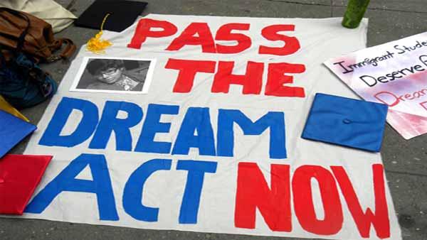 The dream act essay
