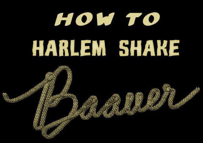 Harlem shake office meeting ice