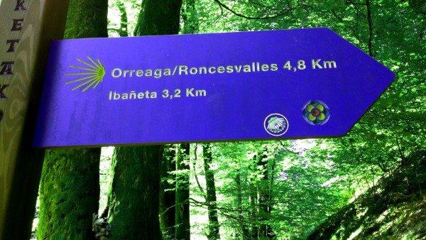 Camino Roncesvalles